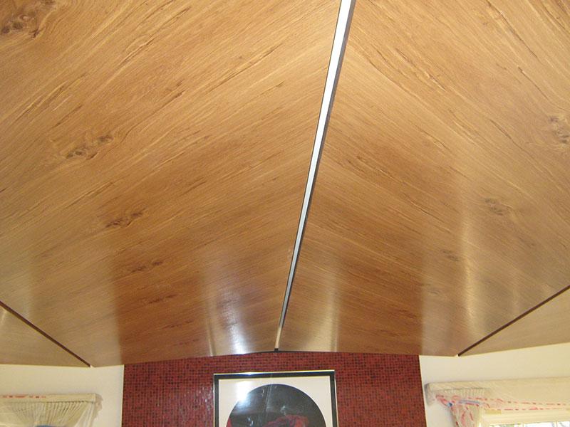 Ceiling-panel-2